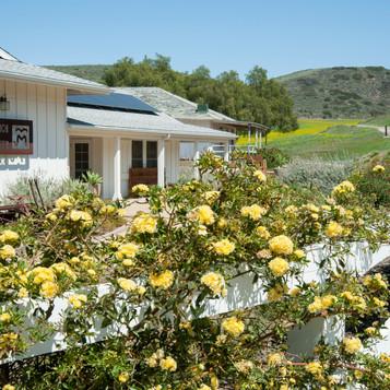 03_DSC_9295_McCrea Ranch-LOW RES.jpg