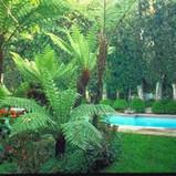est_gardens011.jpg