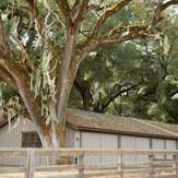 13_DSC_3964_Rancho San Carlos-Extra-LOW
