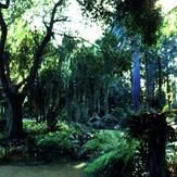 est_gardens024.jpg