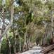 02_DSC_9260_McCrea Ranch-LOW RES.jpg