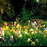 est_gardens029.jpg