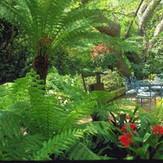 est_gardens002.jpg