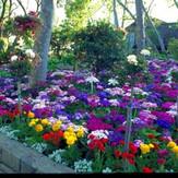 est_gardens009.jpg