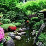 japan_gdn012.jpg