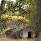 10_DSC_3885_Rancho San Carlos-LOW RES.jp