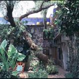 mexicasa018.jpg