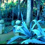 est_gardens026.jpg