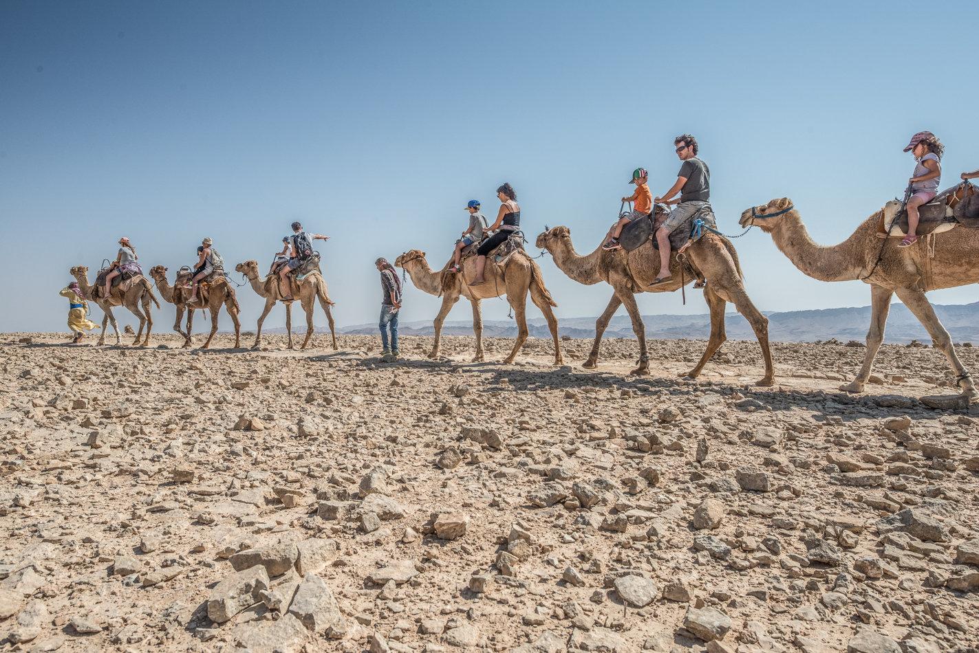 1 h. camel Ride