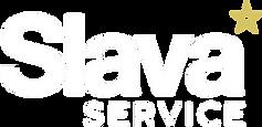 Новый лого_без фона.png