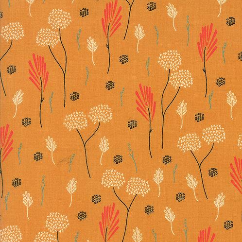 Desert Bloom - 37521 13