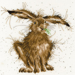 XHD49-Hare-Brained-small-720x720.jpg