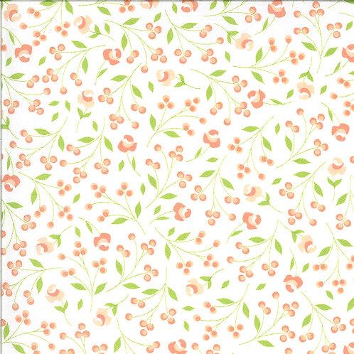 Apricot & Ash - 29103 11