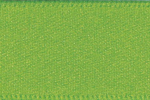 Ribbon Double Satin - 10mm Meadow