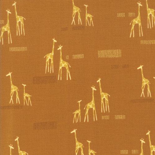 Safari Life - 20647 17