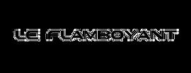 logo_flamboyant_ss_fond_2.png