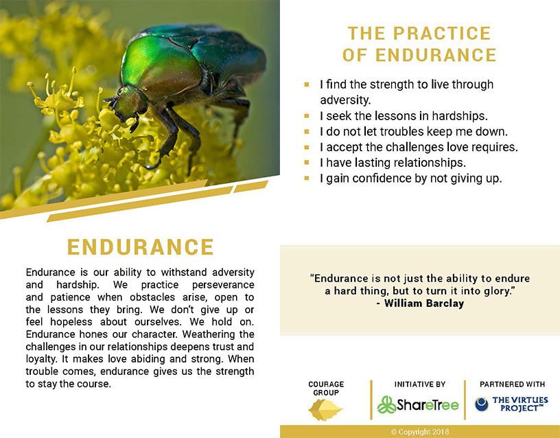 Endurance.jpg