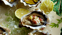 oesters-768x433.png