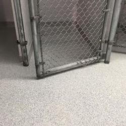 Veterinary Flooring