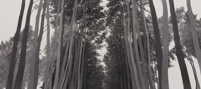 Secret forest_한지에 수묵_76.5×173cm_2021.jpg