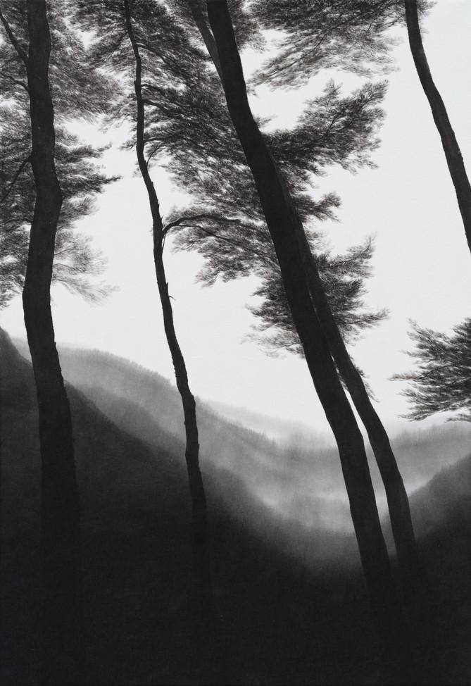 Pine grove_한지에 수묵_72.7×50cm_2021.jpg