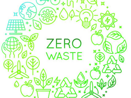 Zero Waste Living Update and Tips & Tricks