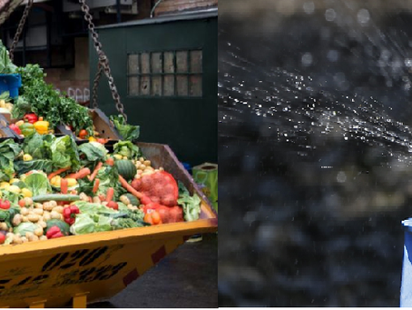 More to Food Waste; Water