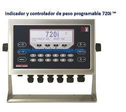 Indicador_y_controlador_de_peso_programa