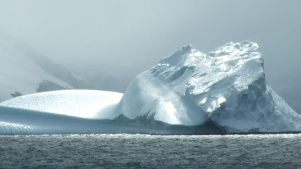 Top-up PhD scholarship available - Antarctic marine biology