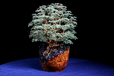 Alarik Greenland , Alerik, Aleric, Alerick, Allerick, Crystal wire tree sculptor, totnes, devon, Interior Design, wire bonsai tree, wire gemstone trees, bonsai, gemstone, wire gemstone tree, wire crystal trees, tree sculptures, tree sculpture, Bonsai trees