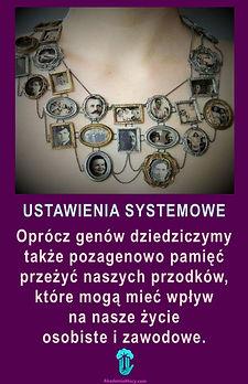 Ustawienia_AMKA_www_str główna.jpg