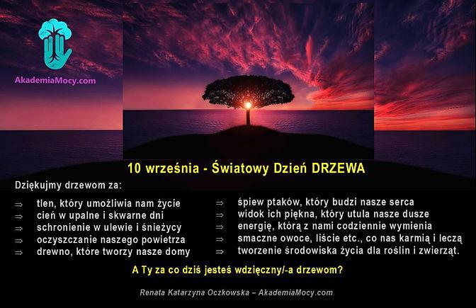 Drzewo_10.IX_Swiatoqy_dzień_drzewa.jpg