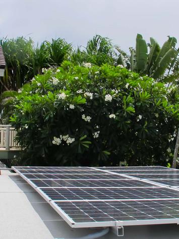 solar web-13.jpg