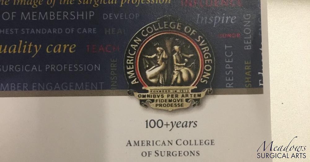 Fellowship in American College of Surgeons (FACS) | Lapel Pin | Meadows Surgical Arts