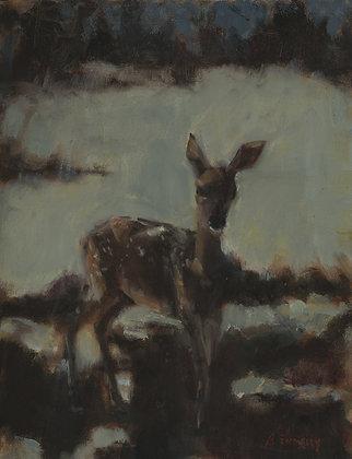 Good Night Deer