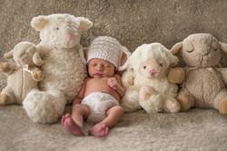 Newborn and stuffys