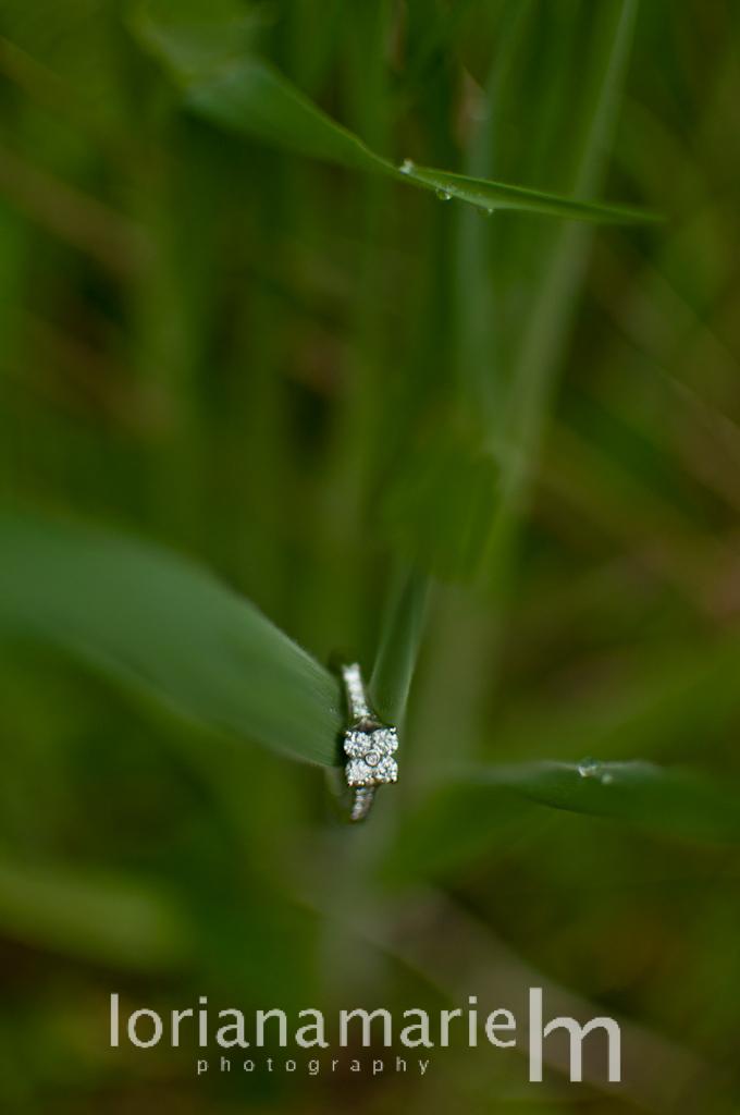 Wedding ring on grass