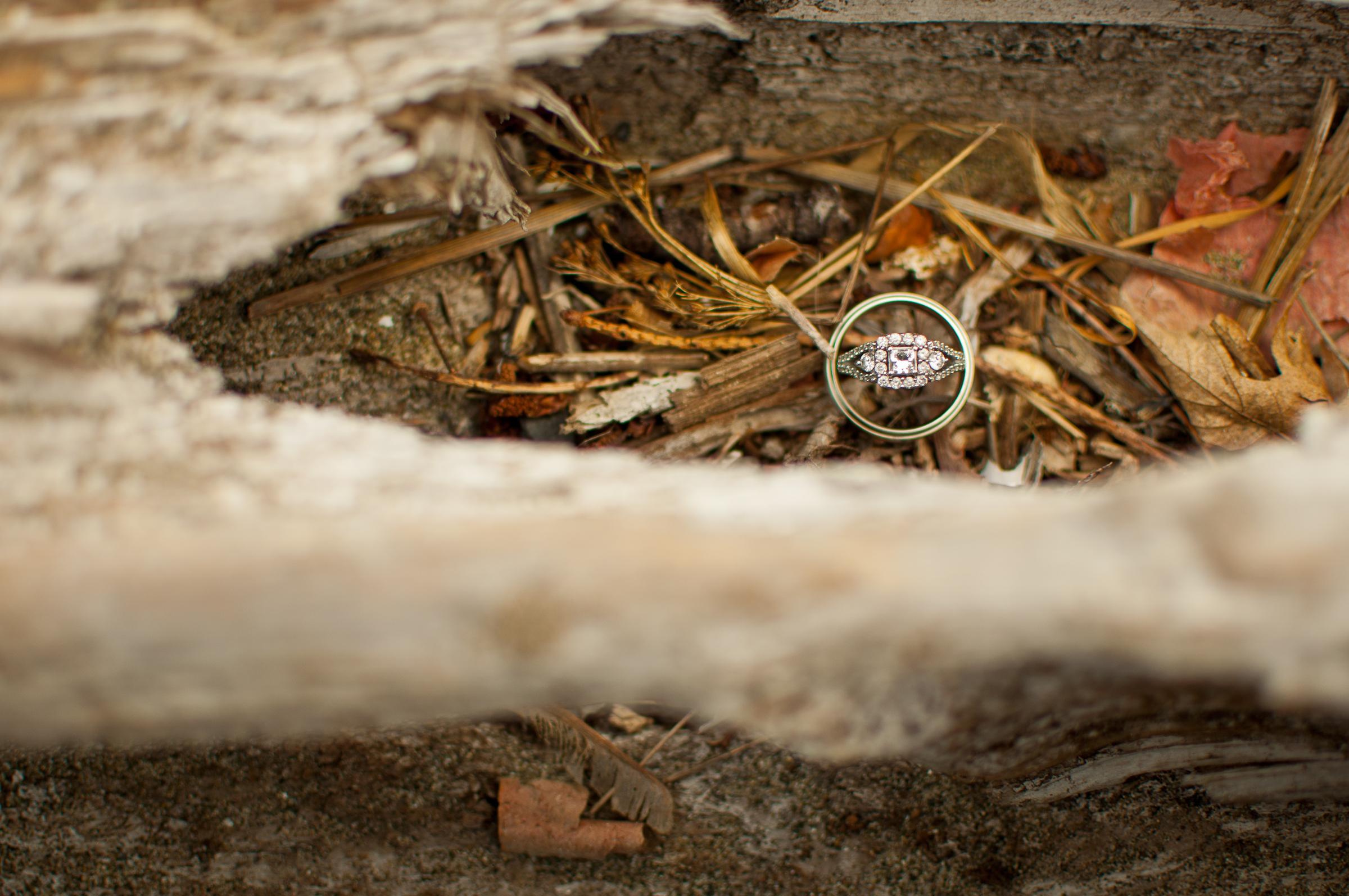 Wedding rings in beach wood