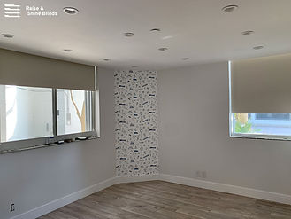 blackout-ivory-roller-shades-bedroom-ave