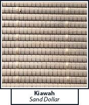 kiawah-sand-dollar.jpg