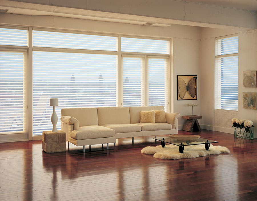 sheer shades silhouette in living room light filtering