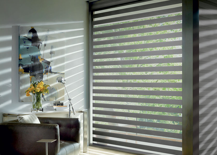 zebra shades versatility to replace vertical blinds