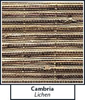 cambria-lichen.jpg