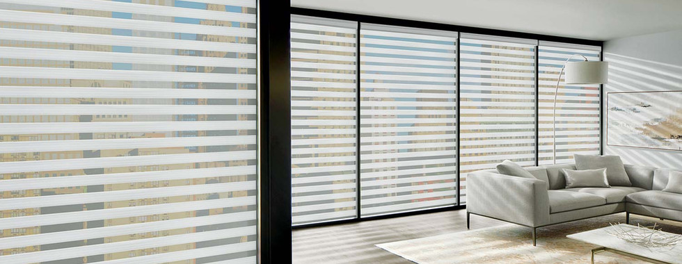 raise-and-shine-blinds-zebra-shade-bucki