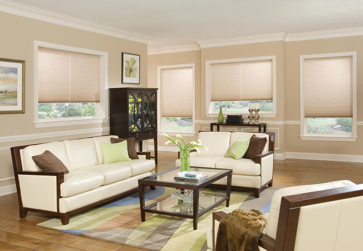 translucent-honeycomb-shades-living-room
