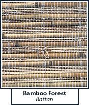 bamboo-forest-rattan.jpg