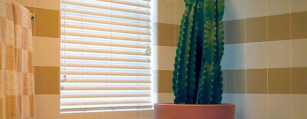 wood-blind-master-bath.jpg