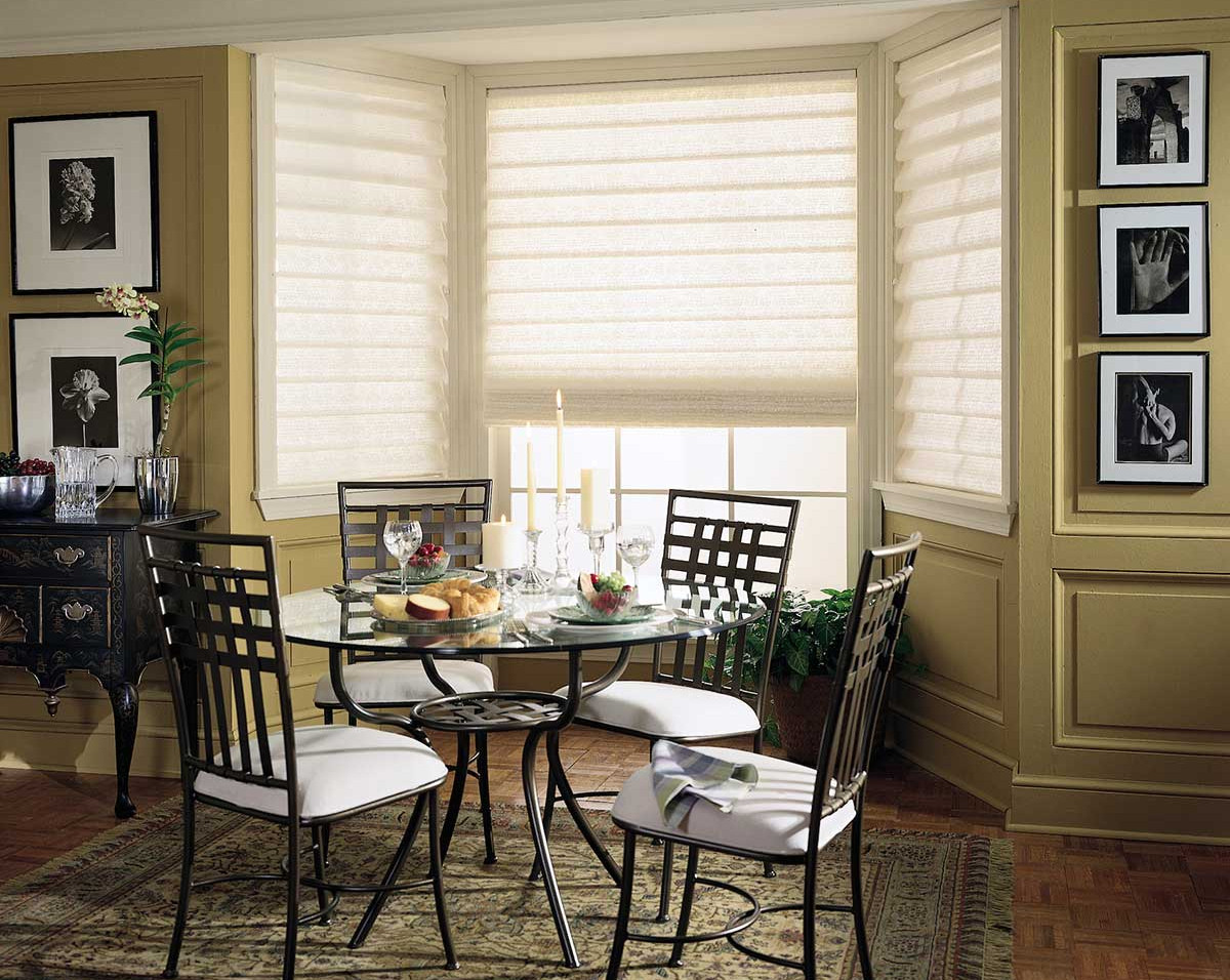 white-light-filtering-roman-shades-break