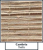 cambria-trellis.jpg