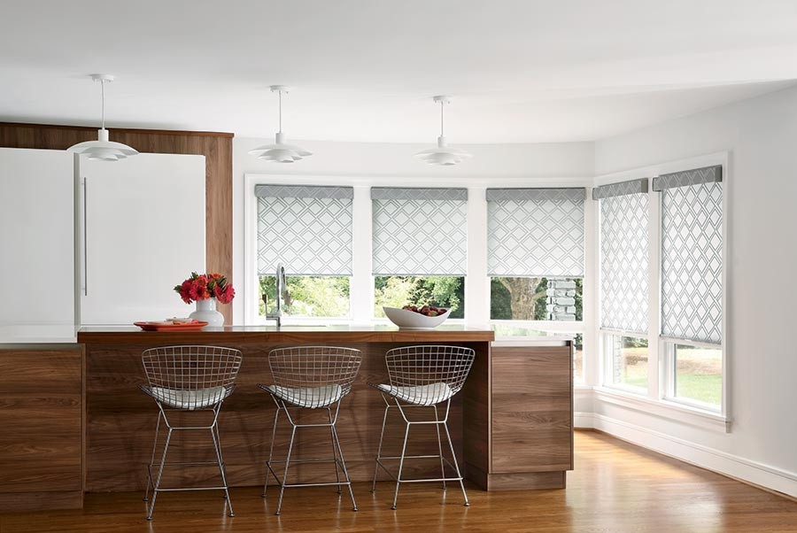 fabric roller shade translucent privacy pattern